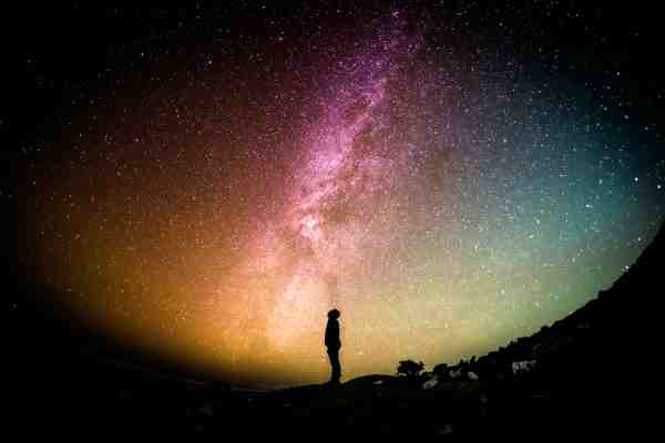 The Observer We Are The Cosmos Made Conscious